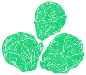 Illustration of SPH-Dell-Nourish-Garden-Brussels Sprouts