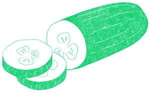 Illustration of SPH- Dell- Nourish- Garden-Cucumber
