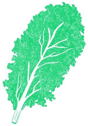 Illustration of SPH-Dell-Nourish-Garden-Kale