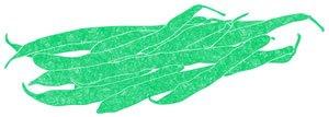 Illustration of SPH-Dell-Nourish-Garden-Green Beans